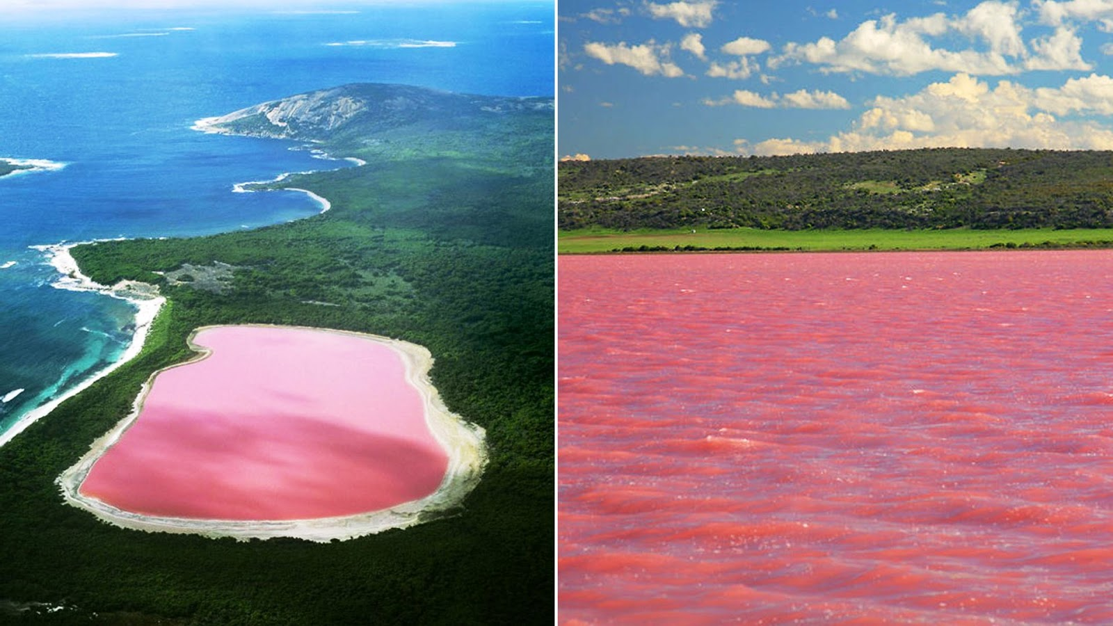 Pink Lakes Rare Natural Wonders Must See How To