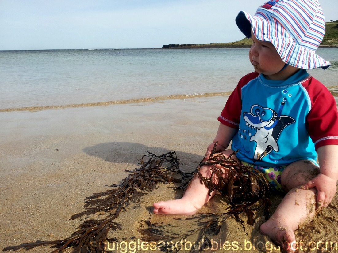 http://squigglesandbubbles.blogspot.com.au/2014/01/a-beach-nature-walk.html