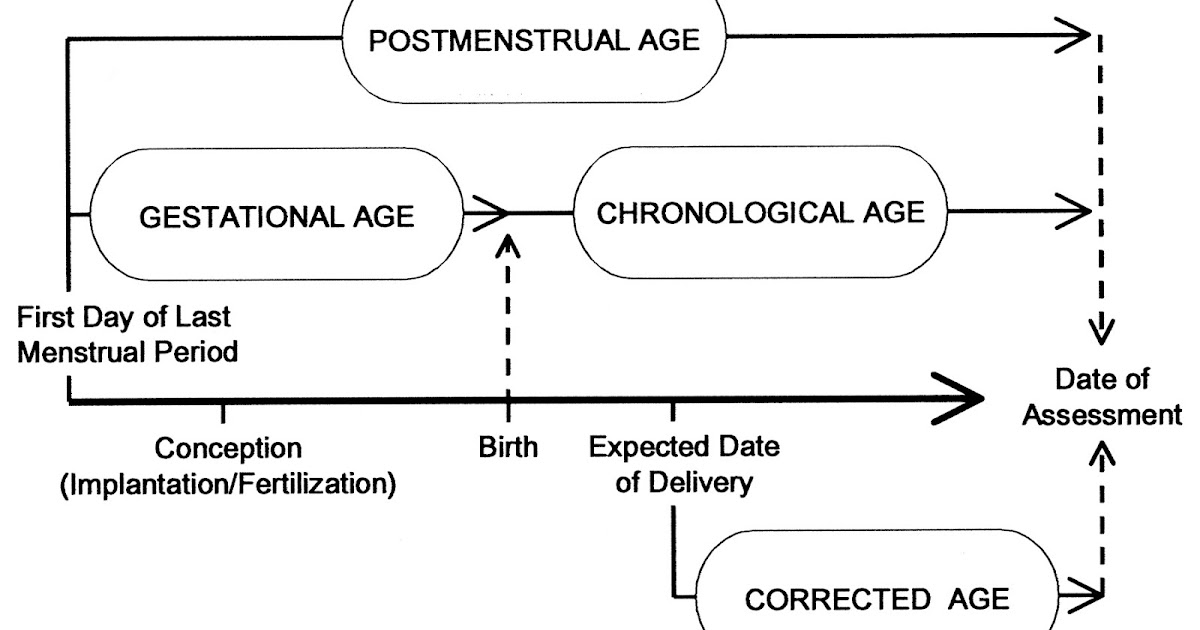 On Biostatistics and Clinical Trials: Age Group in Pediatric