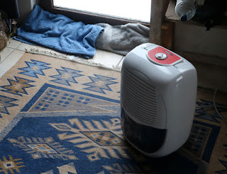 Dehumidifier going to remove the slight flood