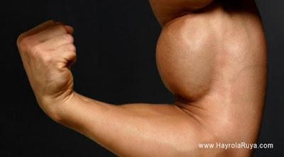 pazu-kol-kası-biceps-ruyada-gormek-nedir-gorulmesi-ne-anlama-gelir-dini-ruya-tabiri-tabirleri-islami-ruya-tabiri-yorumlari-kitabi-ruya-yorumu-hayrolaruya.com