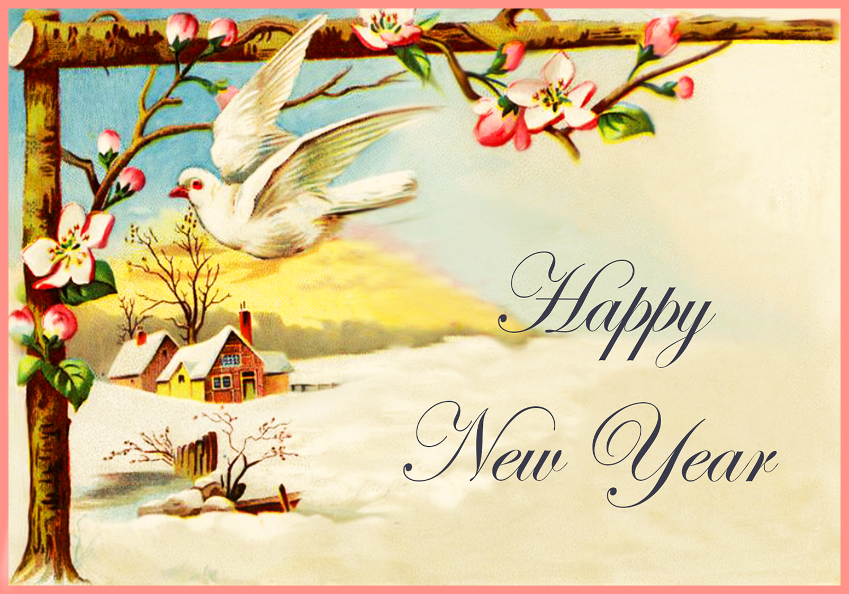 greeting card new year drawings