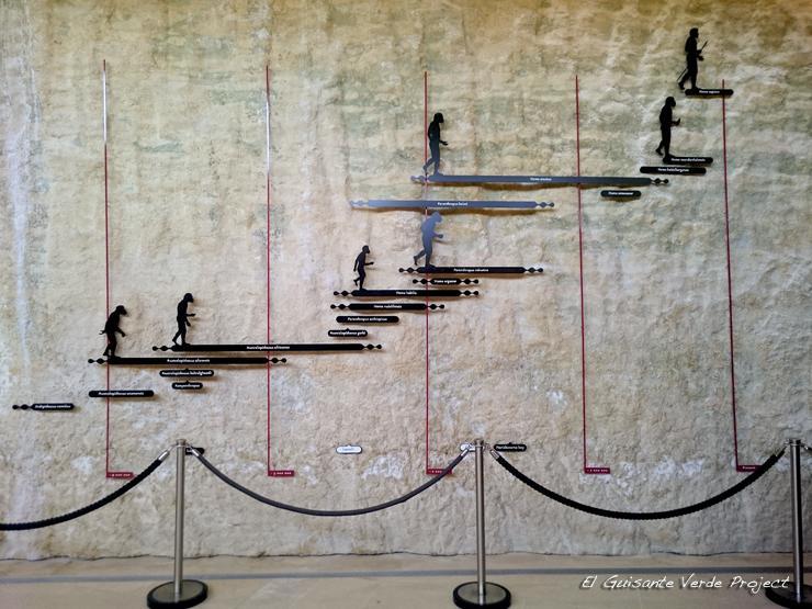 Museo Nacional de Prehistoria Evolución Humana, Les Eyzies de Tayac - Dordoña Perigord