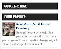 Widget Google+