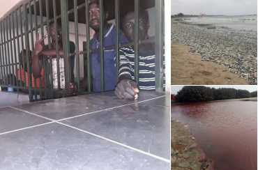 Four men arrested by Gambian police for protesting the pollution of Gunjur sea by a Chinese company