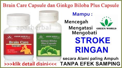http://obatstrokeringan97.blogspot.com/