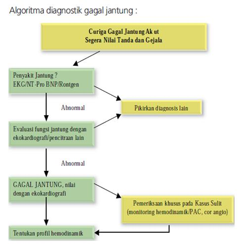 Algoritma Diagnostik Gagal Jantung Akut