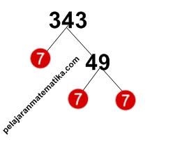 Pohon Faktor-Faktorisasi prima dari 343