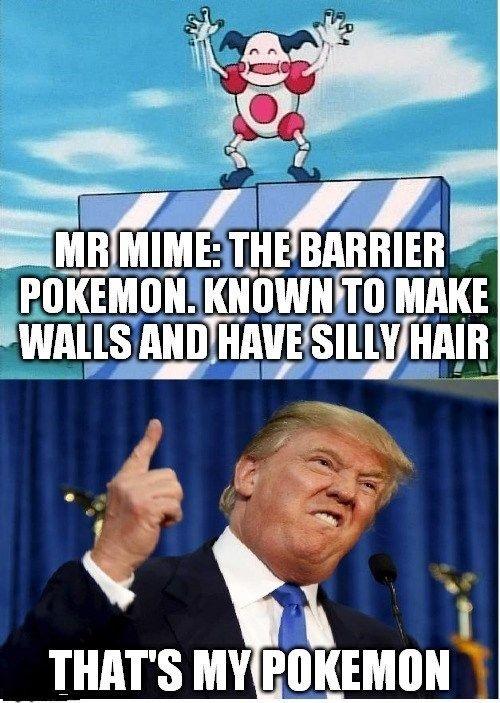 Pokemon Memes 12