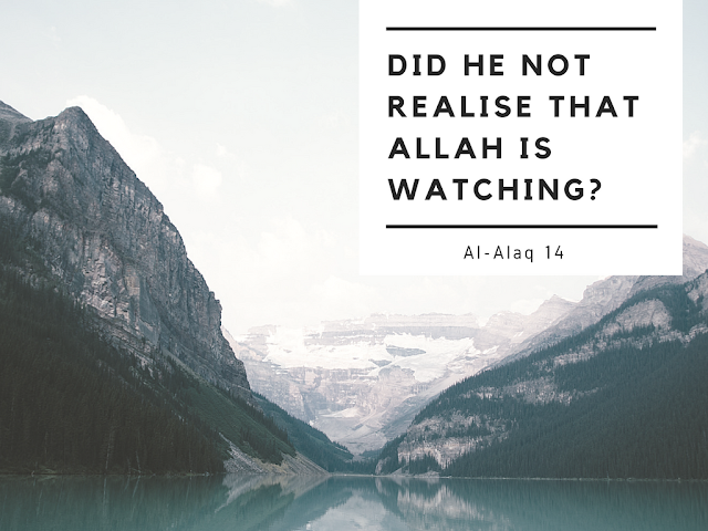 Did he not realise that Allah is watching?
