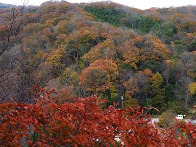 くろんど池 展望台からの眺望 紅葉