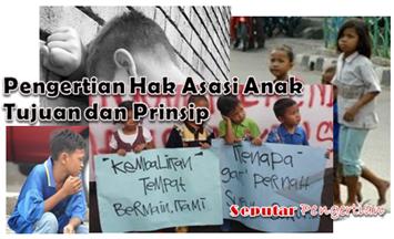 Pengertian Hak Asasi Anak Tujuan dan Prinsip