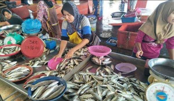 Harga ikan kembung turun RM3 sekilogram akibat lambakan bekalan