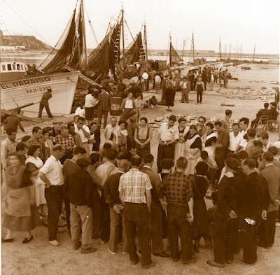 Subasta de pescado en el puerto de Arenys de Mar