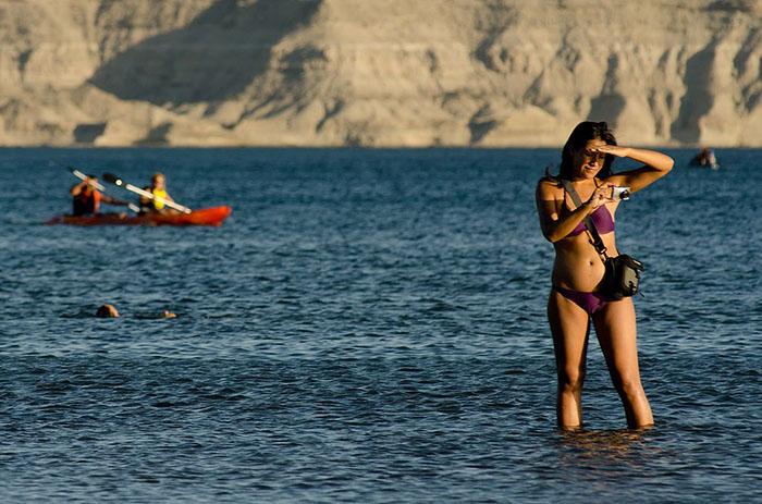 Sigue el Verano en Puerto Pirámides Península Valdés