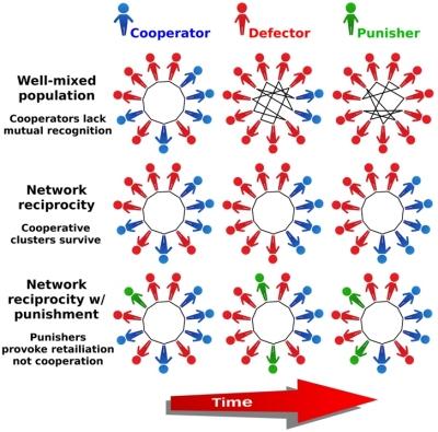 Punição não leva à cooperação social