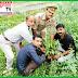 अल्हागंज - स्वतंत्रता दिवस पर पत्रकारों ने किया वृक्षारोपण