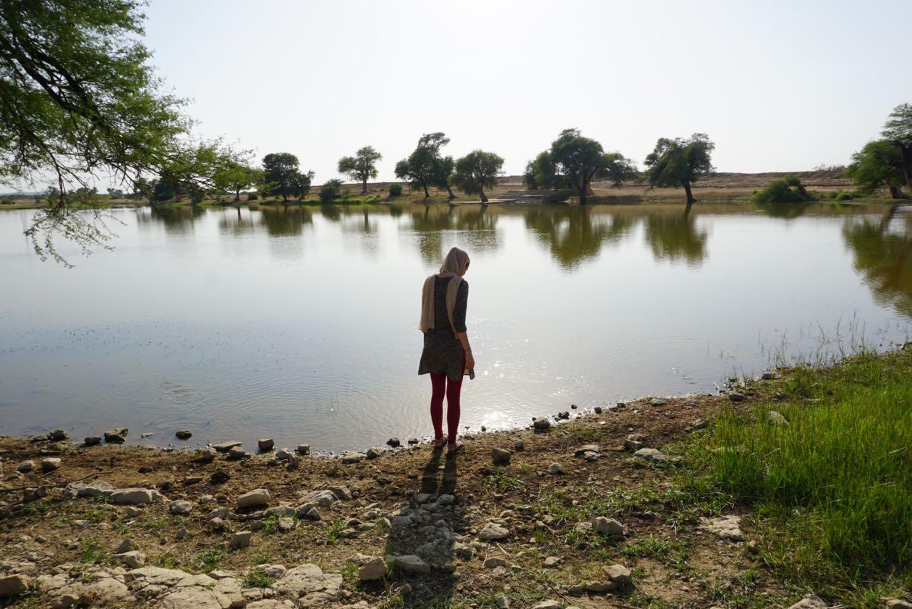 Selbst gemachte reife Dorf-indische Paare