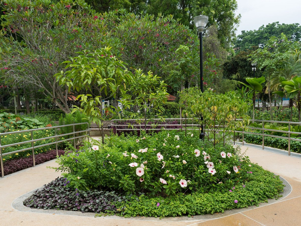 The therapeutic gardens at Bishan-Ang Mo Kio Park