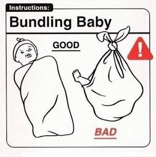 Essential Baby Owner Guide Instructions ~ Silly Bunt Funny