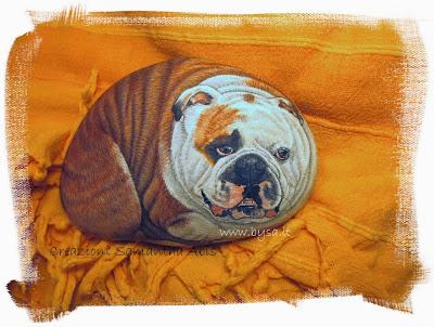 Ritratti di animali su sasso Samantha Abis