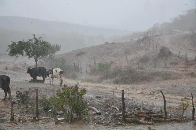 Resultado de imagem para imagens de chuva no nordeste