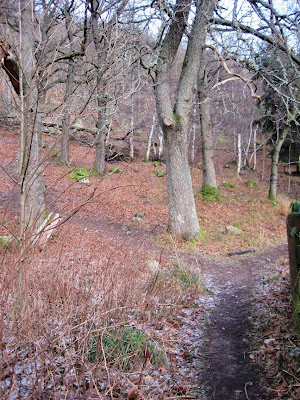 Path up Craigendarroch, Deeside