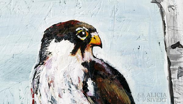 """""""Lärkfalk vid Muskmyr"""" (detail), acrylic painting by Alicia Sivertsson, 2016. fågel rovfågel falk måla målning akryl akrylmålning skapa skapande fågelskåda fågelskådning alicia sivert aliciasivert måla på spånskiva eurasian hobby falcon björk stammar björkstammar konst kreativitet"""