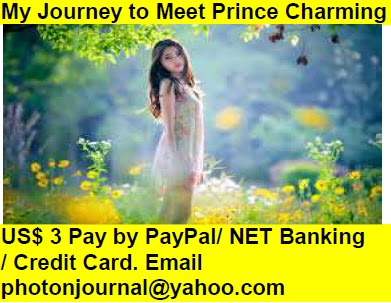 My Journey to Meet Prince Charming