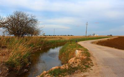 Caminos entre canales en el Ddelta del Ebro