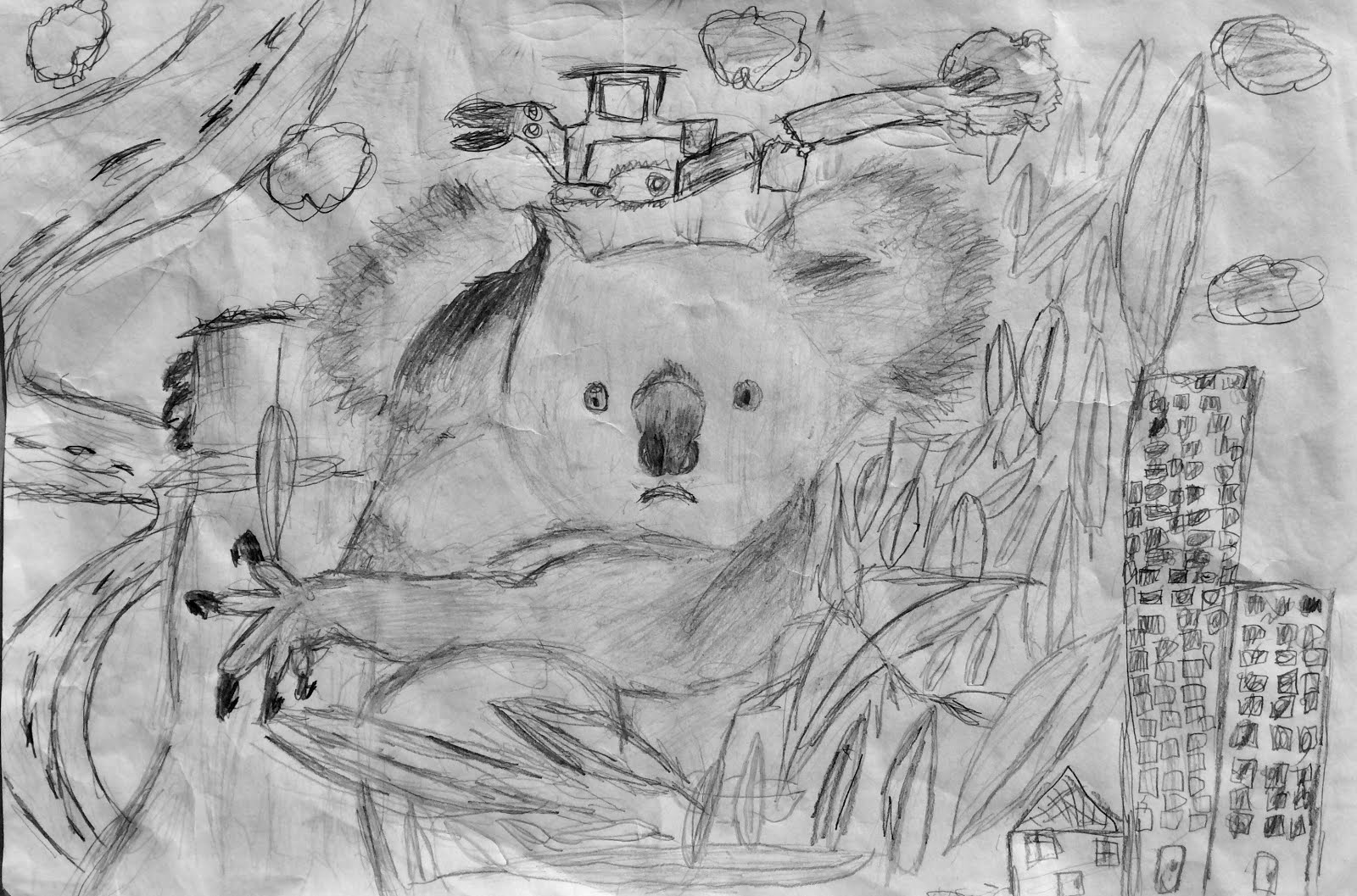 THREATENED SPECIES ART COMPETITION