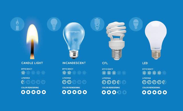 lifetime-bulbs