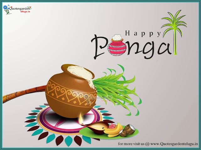 Pongal Greetings wishes - Makar Sankranti Greetings - Makar Sankranti images - Makar Sankranti hd wallpapers