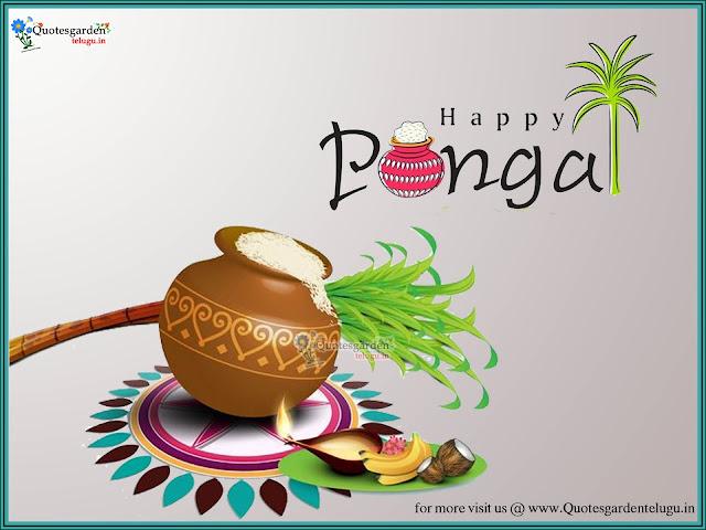 Pongal Greetings wishes - Makar Sankranti Greetings - Makar Sankranti images - Makar Sankranti hd wallpapers