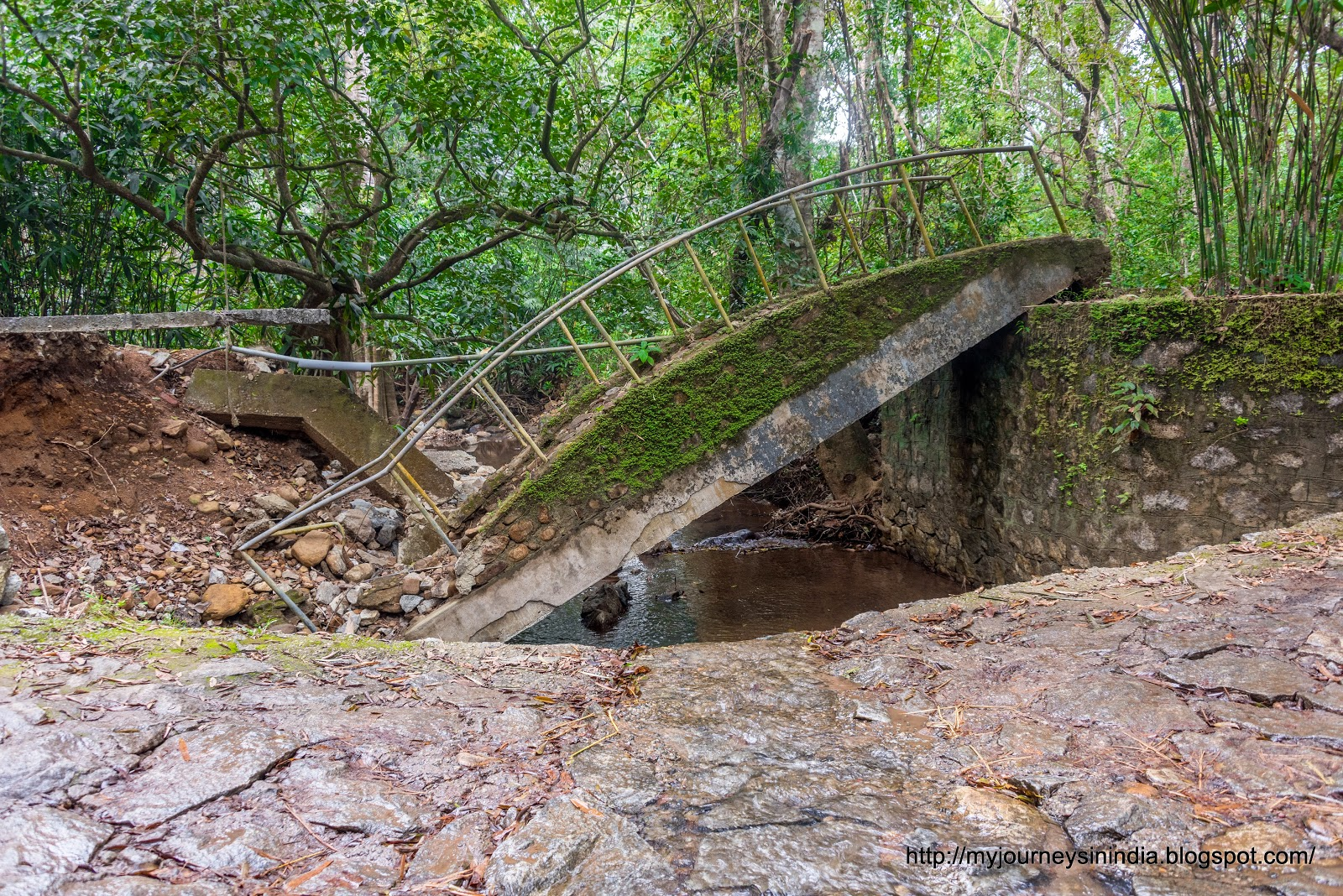 Broken Bridge On the way to Meenmutti Falls