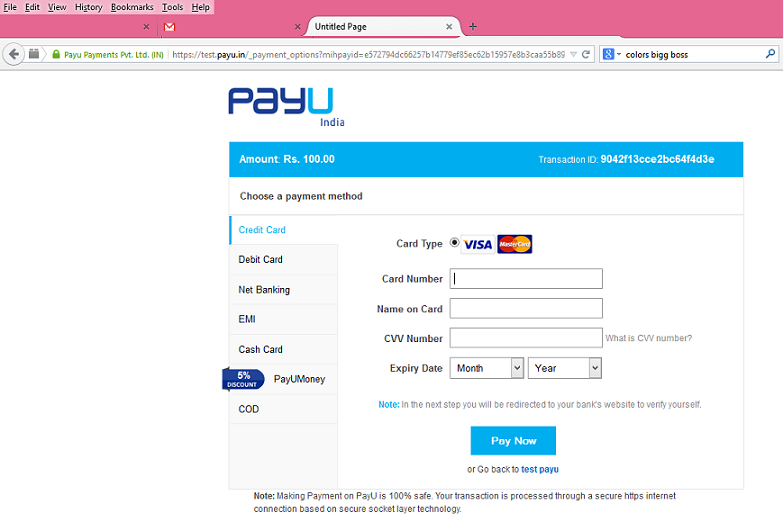 Select Payment method and fill data