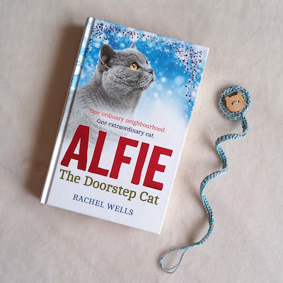 alfie-doorstep-cat