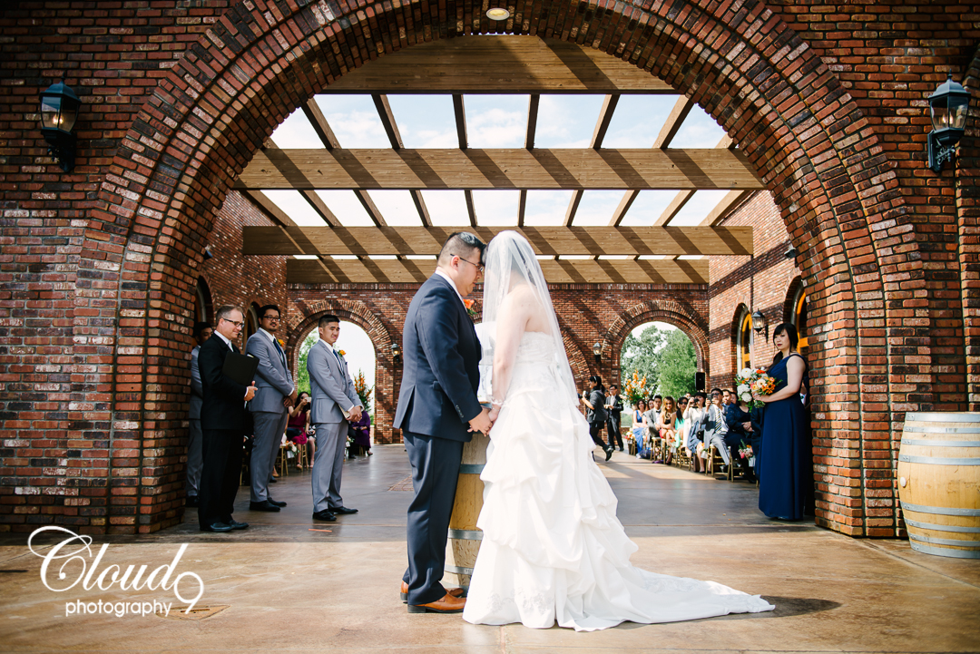 Cloud 9 Photography Robert Hall Winery Paso Robles Destination Navy Blue Orange Wedding Photos Bride Groom