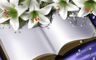 Gambar Bunga Lili Putih Yang Cantik_White Lily 201603