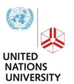 united nations stimulation essay