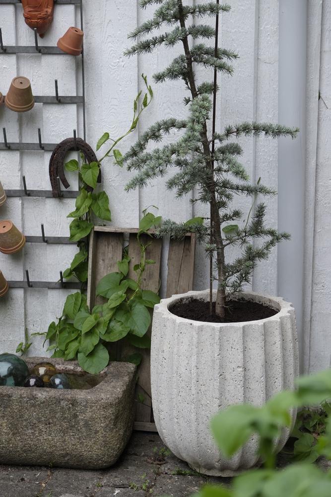 My loving home and garden: Sandstenskrukker - den smukke gamle slags.
