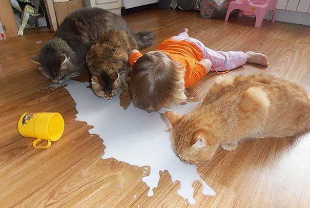 """Trẻ em và thú cưng - bộ đôi """"siêu lầy"""""""