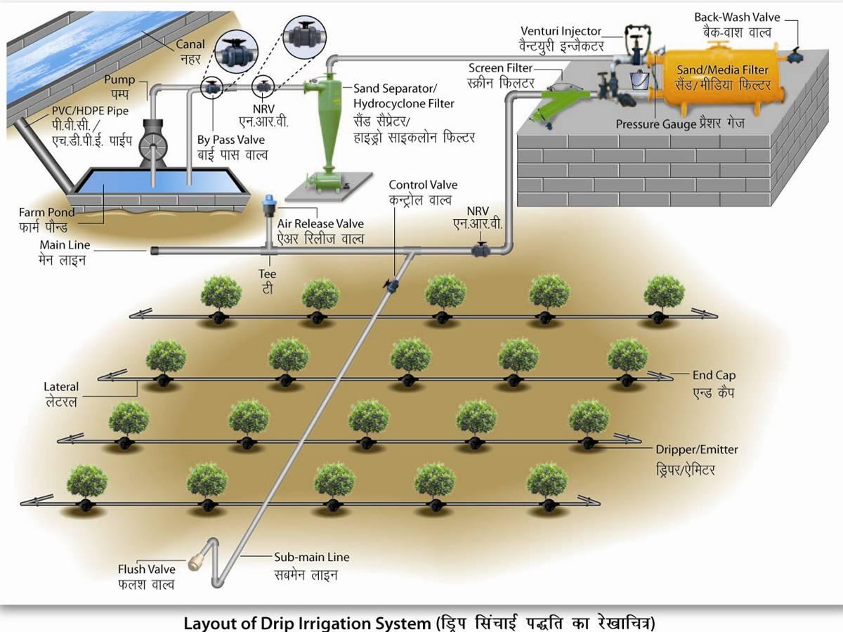 Tarım Siteniz Damlama Sulama Sistemleri 2