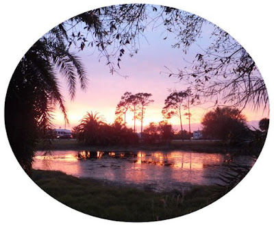 plumbing, thieves, wackadoodles, campground, sunset,pond,lake,wickham