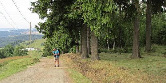 Droga na Przełęcz Sokolą.