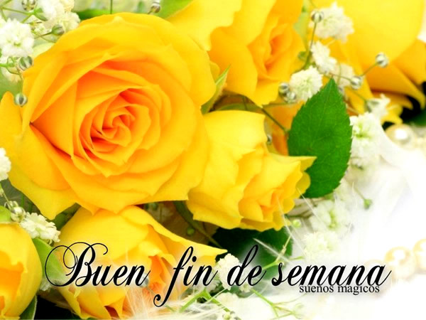 Rosas amarillas Buen fin de semana