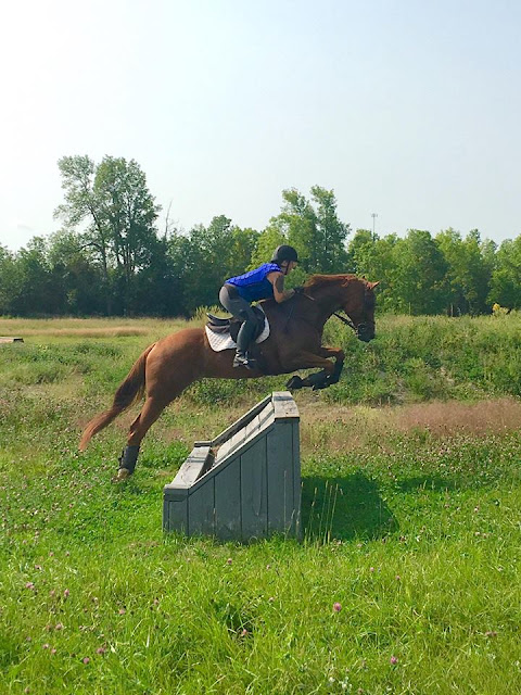 Like an Old Mitt - Miss Pen Goes XC Schooling