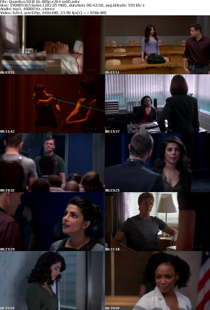 Quantico S01E16 HDTV 720p Download
