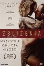 Zblizenia (2014) DVDRip Subtitulados