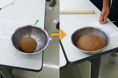 パン生地を発酵